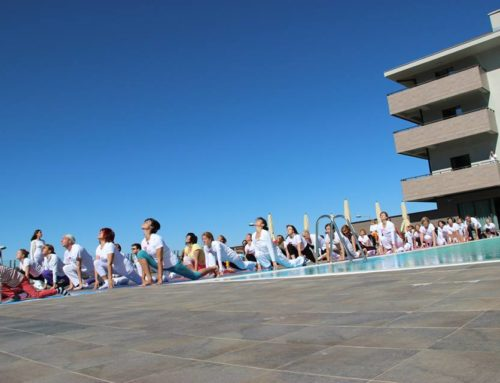 Yoga Retreat Pranava 2015